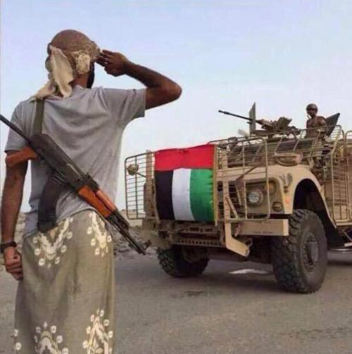 100 شهيد إماراتي سقطوا في حرب اليمن بينهم 12 طيارا