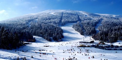 منتجعات التزلج الأوروبية تتنافس في توفير الرفاهية للسياح الأثرياء