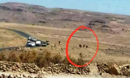 مصادر مقربة من حزب صالح تكشف تفاصيل تعرضه للخيانة من قبل حراسه وعناصر قبلية