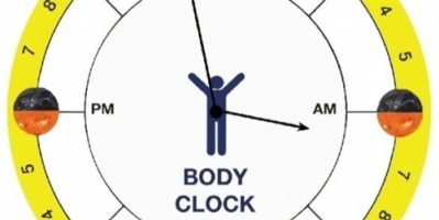 هل تؤثر الساعة البيولوجية على علاج السرطان؟