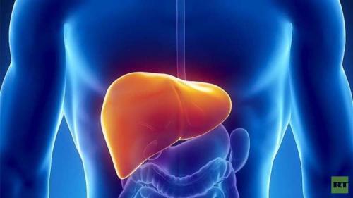 الحمية الغذائية وأهميتها لمرضى الكبد