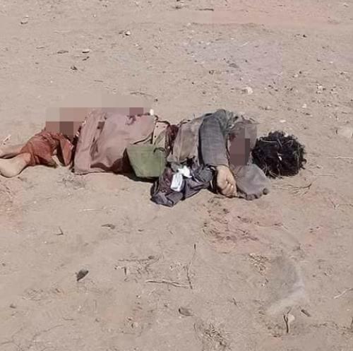 مصدر بالمقاومة يؤكد مقتل وأسر«70» حوثيا في الهجوم الفاشل على الخوخة ويطالب التحالف بسرعة الدعم والتعزيز