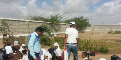 مكتب التربية في ابين يدشن حملة لتشجير مدارس زنجبار