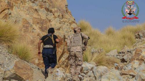 تقدم كبير للجيش في تعز.. ومقتل 35 حوثيا