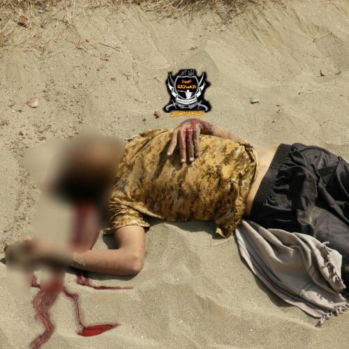 قوات العمالقة تنفذ عملية التفاف وتطهير شمال شرق الخوخة  ومقتل اكثر من«25» حوثيا