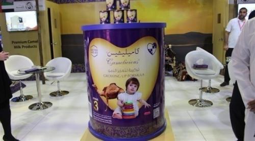 الإمارات: أول حليب للأطفال من الإبل في دبي