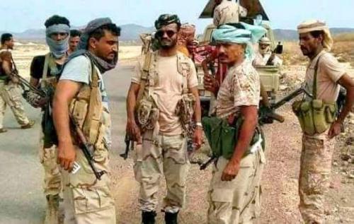 هاشتاغ #السيل_الجارف يجتاح موقع التواصل الإجتماعي بالتزامن مع العملية العسكرية التي تم إطلاقها في مديرية المحفد