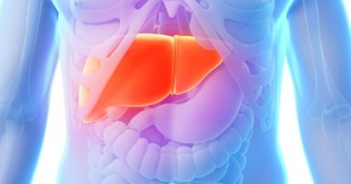 أسباب تليف الكبد ونصائح للعلاج