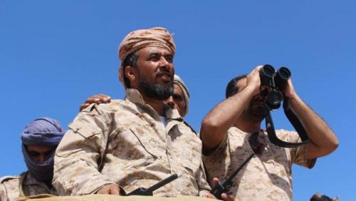 مصرع عشرات الحوثيين بعملية ليلية للجيش بالبيضاء