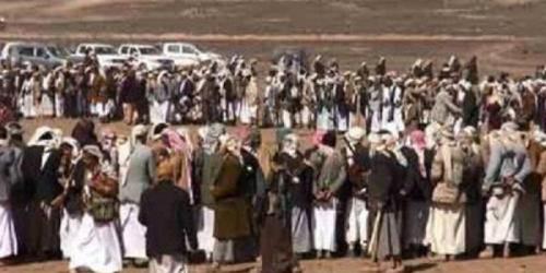 قبائل صعدة ترفض التجنيد الحوثي
