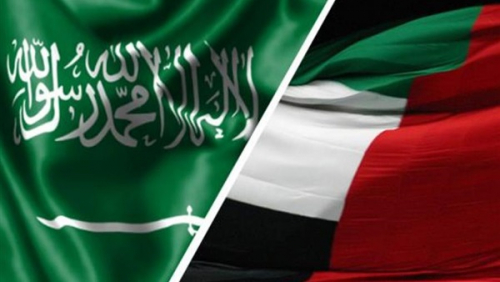 سياسي إماراتي : السعودية والإمارات أكثر الدول رغبة في وقف الحرب باليمن