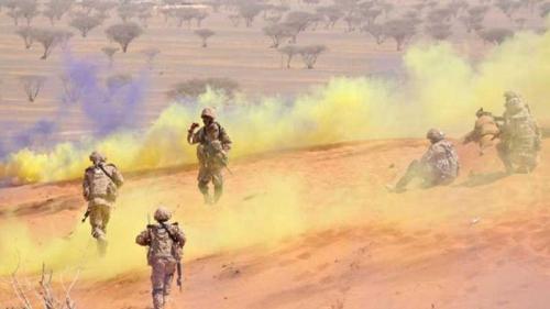 """اختتام التمرين العسكري المشترك """"نمر الصحراء 5"""" بين القوات الإماراتية والماليزية"""
