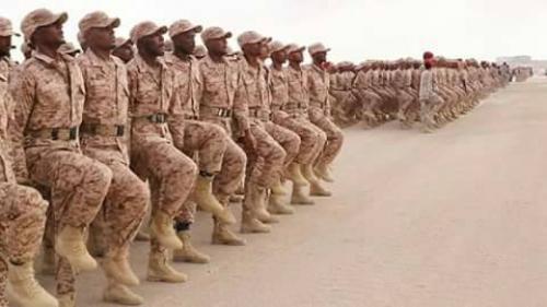 البحسني يشرف على تحضيرات الذكرى الثانية لتحرير ساحل حضرموت