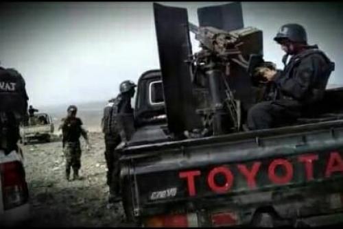 العميد السيد : قوات التدخل السريع تلقي القبض على مطلوبين بينهم أمير داعش بيافع
