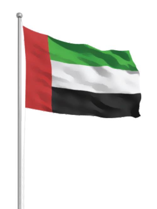 تعهد اماراتي بمواصلة جهدها في اليمن لضمان وصول المساعدات