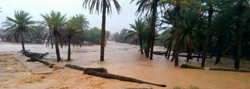 """سقطرة ..السيول تحاصر منطقة """" بدهولة """" من جميع الاتجاهات والأهالي يستغيثون بالتحالف"""