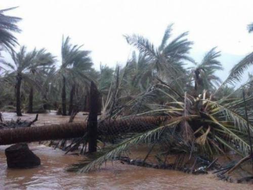 محافظ حضرموت يجري اتصالاً بمحافظ سقطرى للإطمئنان على أوضاع الأرخبيل جراء إعصار (مكونو)