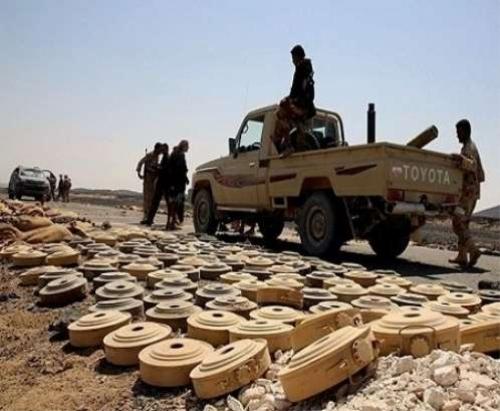 مقتل مسؤول زراعة الألغام الحوثية في الساحل الغربي