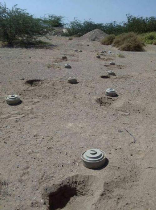 المليشيات الحوثية تكثف زراعة الألغام لإفشال محاولة تحرير الحديدة ( تقرير )