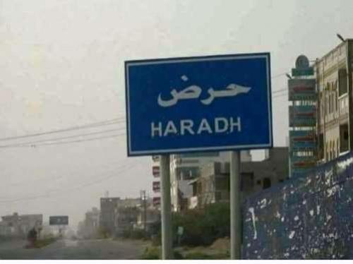 القوات الحكومية تقترب من الخط الدولي الرابط بين مديرية حرض والحديدة
