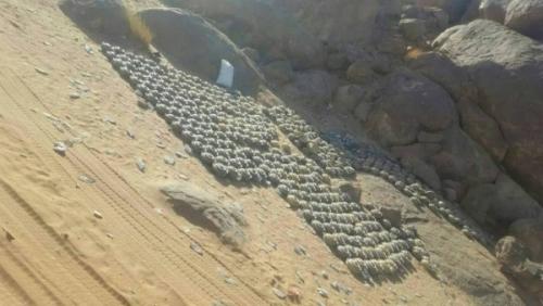 الفرق الهندسية تنزع 100 لغم زرعتها المليشيات بمديرية خب الشعف في الجوف