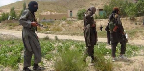 مقتل 11 من طالبان في عمليات للجيش جنوب أفغانستان