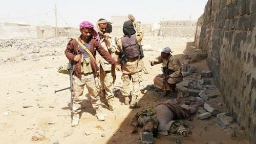 حالة ارتباك تسود صفوف ميليشيا الحوثي بعد تزايد قتلاهم جنوب الحديدة