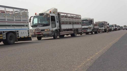 برامج المساعدات الإماراتية تغيث 14 مليون يمني