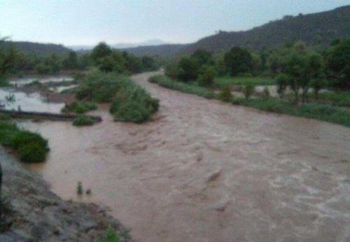 """لحج : هطول امطار غزيرة على """" كرش """" بعد موجة جفاف شديدة"""