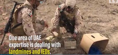 شاهد.. كيف ينزع جنود إمارتيون الألغام الحوثية من الحديدة؟