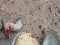 إبطال عبوة ناسفة وضعت بحافظة طعام في الشيخ عثمان