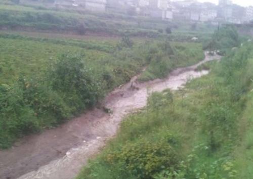 شاهد.. أمطار غزيرة وسيول على مناطق إب