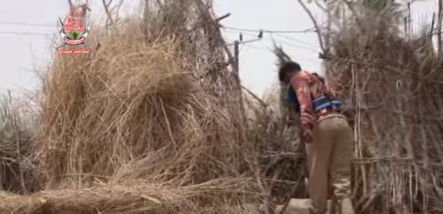 فيديو.. ألوية العمالقة تفكك ألغام الحوثي بالدريهمي