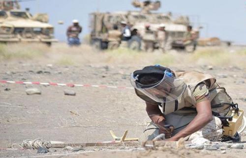 مقتل وإصابة 43 مدنياً بالألغام الحوثية في التحيتا