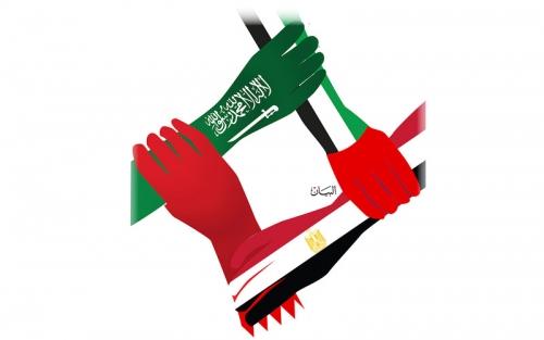 الإمارات تفند مزاعم قطر في مجلس حقوق الإنسان