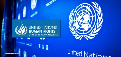 المجموعة الجنوبية المستقلة بجنيف تلتقي المفوضية السامية لحقوق الانسان التابعة للأمم المتحدة