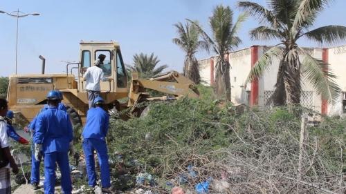 حملة لقطع أشجار السيسبان بعدة مواقع بحضرموت (صور)