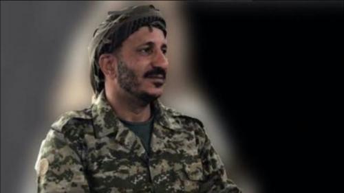 """طارق صالح يصف زعيم الحوثيين بـ""""حمالة الحطب"""""""