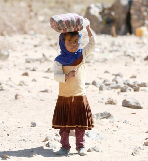 """""""العرب"""" اللندنية: الحكومة اليمنية تصعّد معركتها ضد تسييس الملف الحقوقي"""