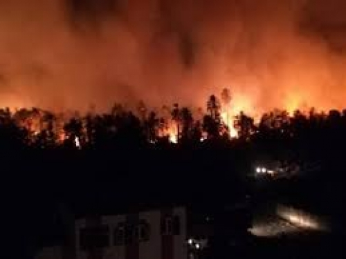 شاهد.. حريق يلتهم قرى كاملة في مصر