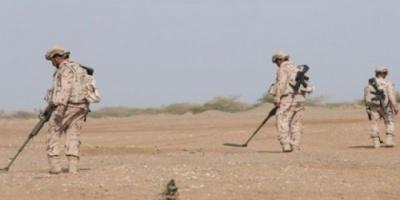 نزع آلاف الألغام ببلدات الساحل الغربي ومحافظة حجة