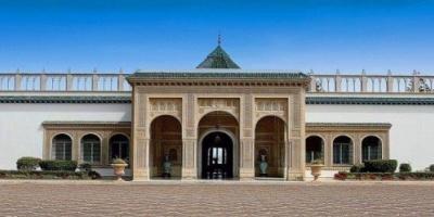«بعوضة النمر» تحاصر قصر الرئيس التونسي بقرطاج