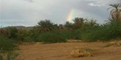 بالصور سقوط أمطار خفيفة على محافظة حضرموت
