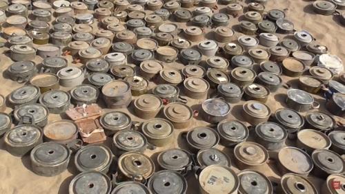 مجلي :ضحايا ألغام مليشيا الحوثي بلغ 10 آلاف مدني