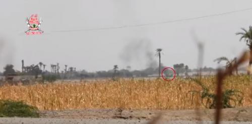 «فيديو».. تطهير مزارع في التحيتا من مليشيا الحوثي