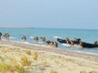 انطلاق التدريب العسكري المشترك بين الإمارات والولايات المتحدة