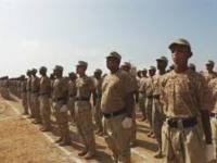 """النخبة الشبوانية تؤمّن نفط """" العقلة """" بموجب اتفاق رعاه التحالف العربي"""