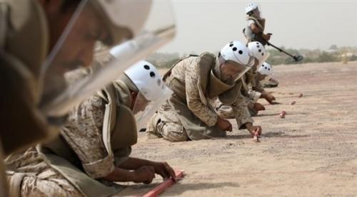 """مشروع """"مسام"""" السعودي ينجح بنزع أكثر من 9 آلاف لغم في اليمن"""