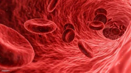 كيف تعمل الدورة الدموية بجسم الإنسان؟