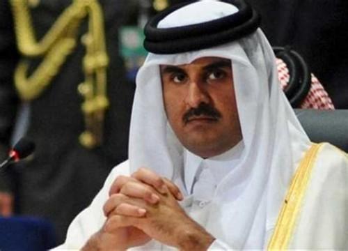 """ناشط سياسي: قطر """"الذبابة"""" هي الراعي الرسمي للإرهاب"""
